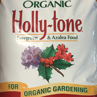Hollytone