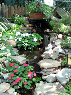 Pond Department Haines Farm and Garden SupplyHaines Farm and
